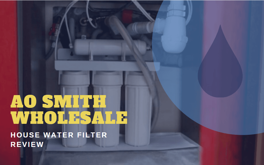AO Smith Wholesale House Water Filter Review